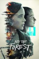 Poster Into the Forest