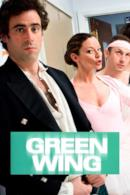 Poster Green Wing