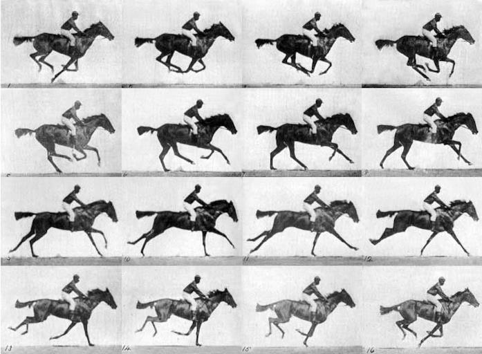 La celebre foto di Muybridge
