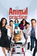 Poster Animal Practice