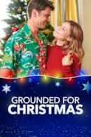 Poster Grounded for Christmas