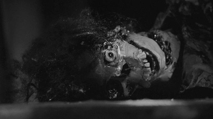 Uno scheletro di donna divorato abbandonato a terra