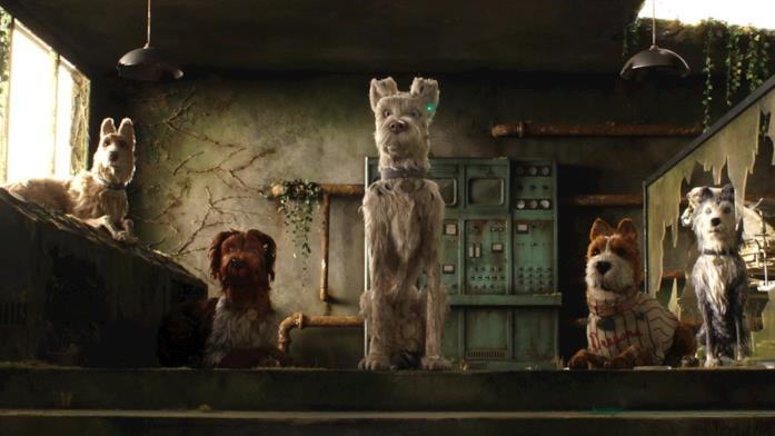 Alcuni cani, all'interno di una logora strttura, stanno guardando in una direzione