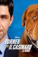 Poster Turner e il casinaro - La serie