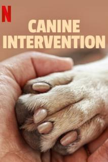 Poster Canine Intervention