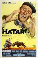 Poster Hatari!