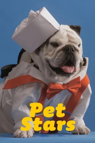 Poster Pet Stars
