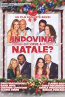 Poster Indovina chi viene a Natale?