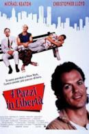 Poster 4 pazzi in libertà