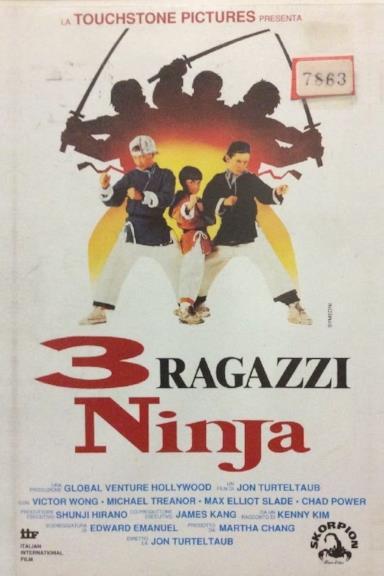Poster 3 ragazzi ninja