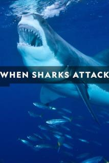 Poster When Sharks Attack