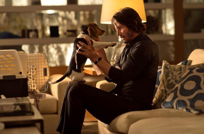 Un'immagine di John Wick e il suo cane