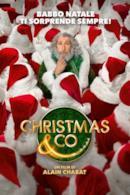 Poster Christmas & Co.