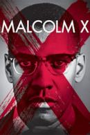 Poster Malcolm X