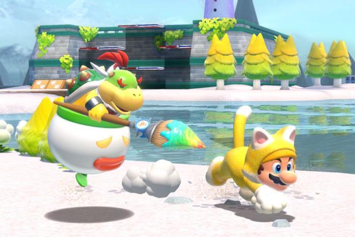 Mario Bowser's Fury coop