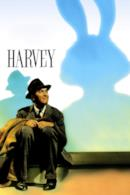 Poster Harvey