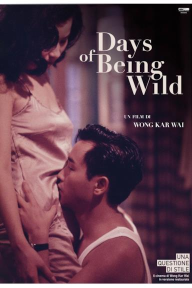 Poster Days of Being Wild