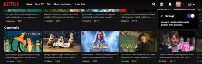 Home Page di Netflix con i dettagli dei titoli attivi