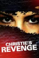 Poster La vendetta di Christie