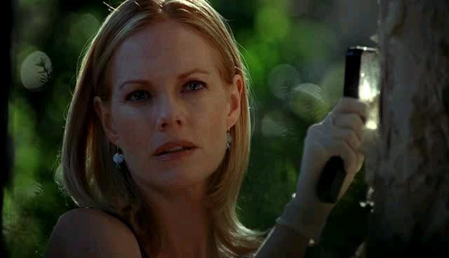 Catherine Willows, personaggio di CSI - Scena del crimine