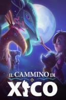 Poster Il cammino di Xico