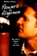 Poster Flowers for Algernon