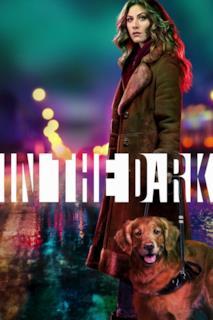 Poster In the Dark