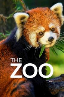 Poster The Zoo