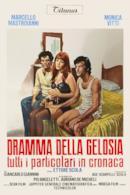 Poster Dramma della gelosia (tutti i particolari in cronaca)