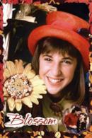 Poster Blossom - Le avventure di una teenager