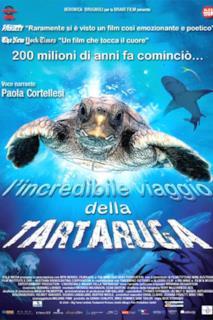 Poster L'incredibile viaggio della tartaruga