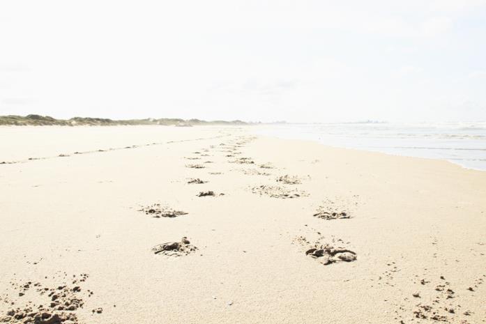 La distesa di sabbia della spiaggia di Dunkerque