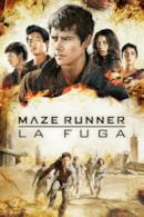 Poster Maze Runner - La fuga