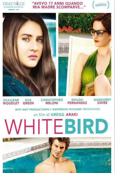 Poster White Bird