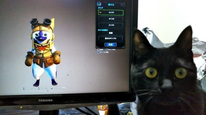Un gatto ''gioca'' a Monster Hunter World
