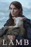 Poster Lamb