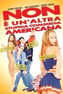 Poster Non è un'altra stupida commedia americana