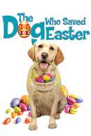 Poster Zeus - Una Pasqua da cani