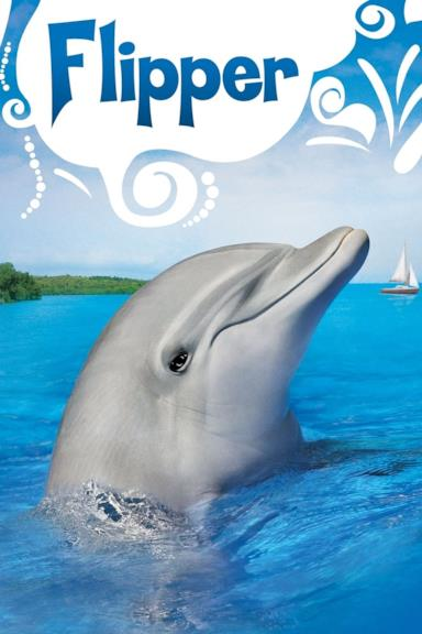 Poster Flipper
