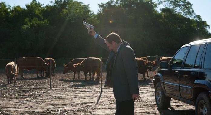 L'avvocato spara nel pascolo delle vacche