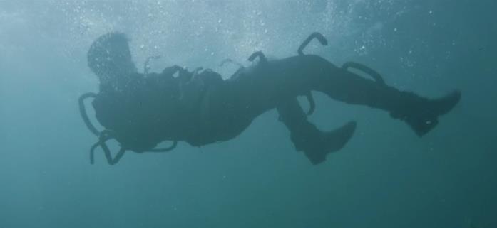 Logan in acqua