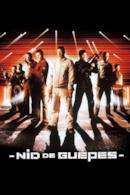 Poster Nido di vespe