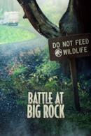 Poster Battle at Big Rock