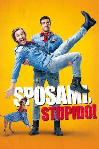 Poster Sposami, stupido!