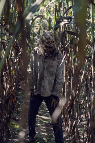 Uno zombie o un sussurratore?