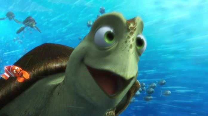 Scorza, la tartaruga