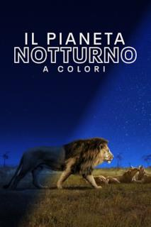 Poster Il pianeta notturno a colori