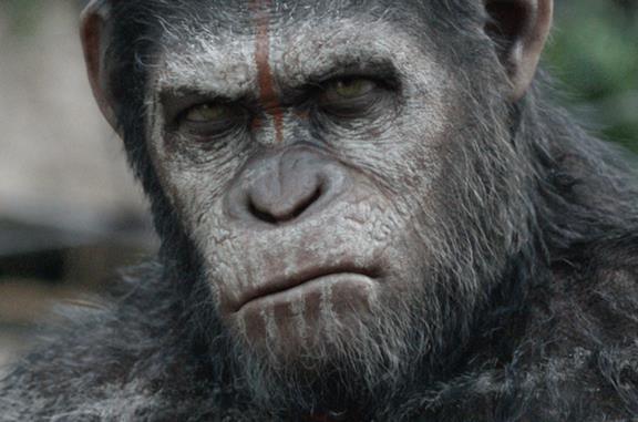 Planet of the Apes: Wes Ball conferma che il nuovo film non deluderà i fan