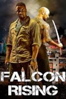Poster Falcon Rising
