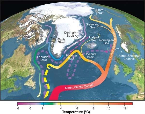 Immagine delle correnti di superficie e profondità nell'Oceano Atlantico
